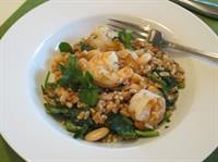 Farro and Shrimp Salad